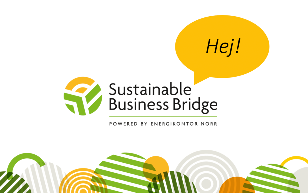 Sustainable Business Bridge